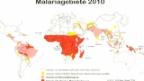 Video «Malaria – wann ist Prophylaxe nötig?» abspielen