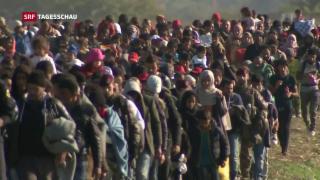 Video «Verzögerungen bei Asylverfahren» abspielen