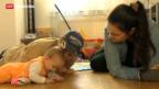 Video «Meinungswandel beim Familienartikel» abspielen
