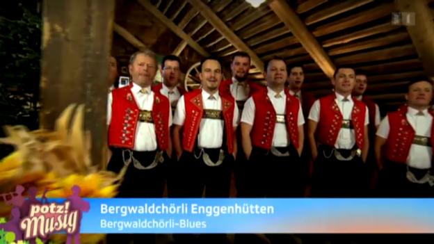 Video «Bergwaldchörli Enggenhütten» abspielen