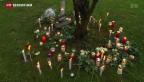 Video «Psychiatrisches Gutachten im Fall Marie» abspielen
