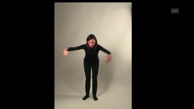 Video «Lerngeste: Besitz» abspielen