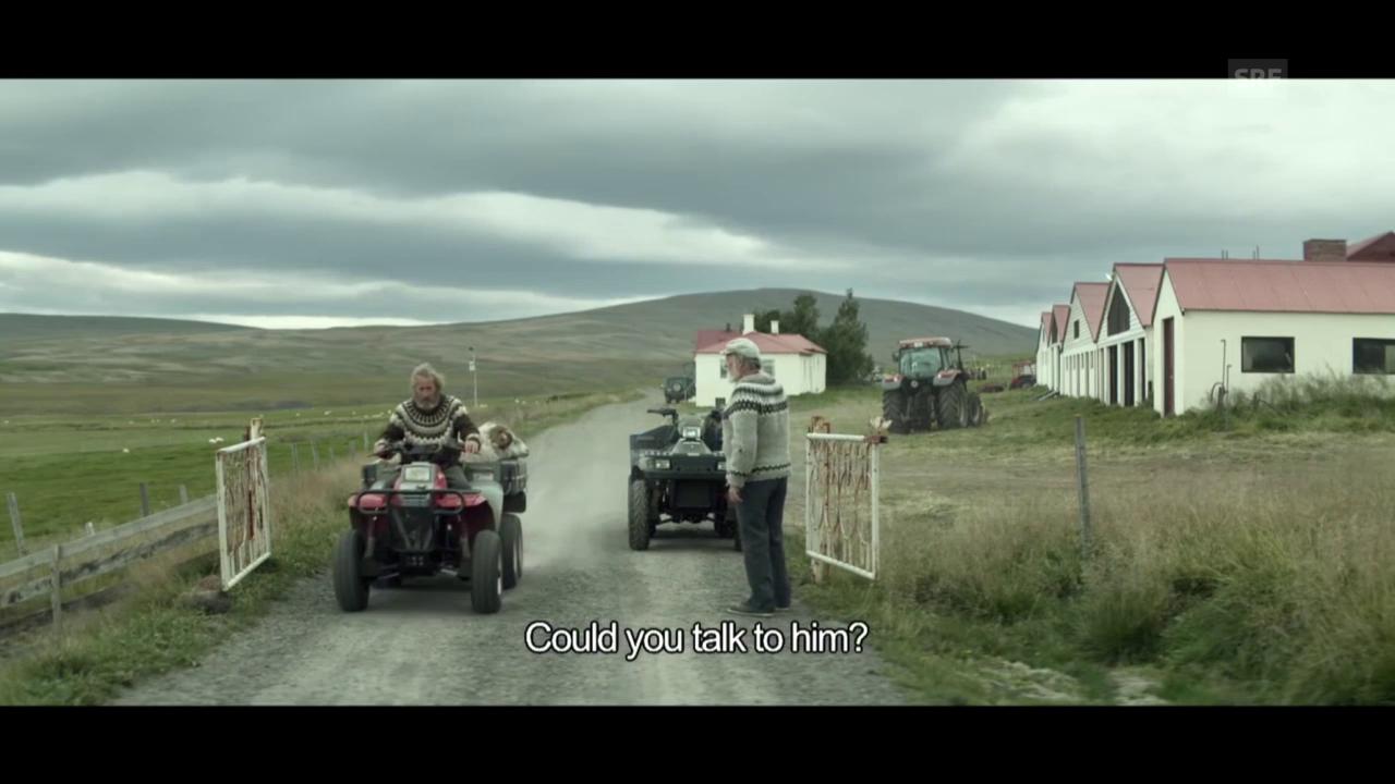 Trailer «Hrútar»