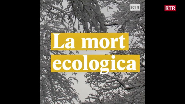 Laschar ir video «La mort ecologica»