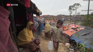 Video «FOKUS: Vertriebene Rohingya sollen nach Burma zurück» abspielen