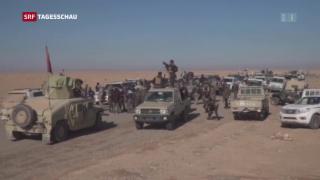 Video «Irak verkündet Sieg über IS» abspielen