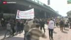 Video «Fünfter Jahrestag der ägyptischen Revolution» abspielen