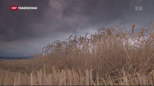 Video «Tagesschau vom 15.09.2016, 19:30» abspielen
