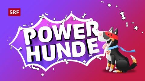 Powerhunde
