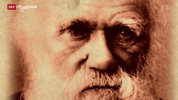 Video «Science Gossip: Charles Darwin (1/13)» abspielen