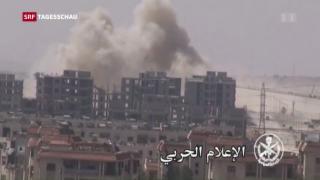 Video «Sieg für syrische Rebellen» abspielen