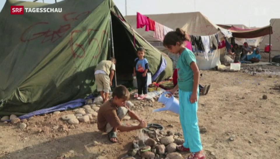 Bundesrat will syrische Flüchtlinge aufnehmen