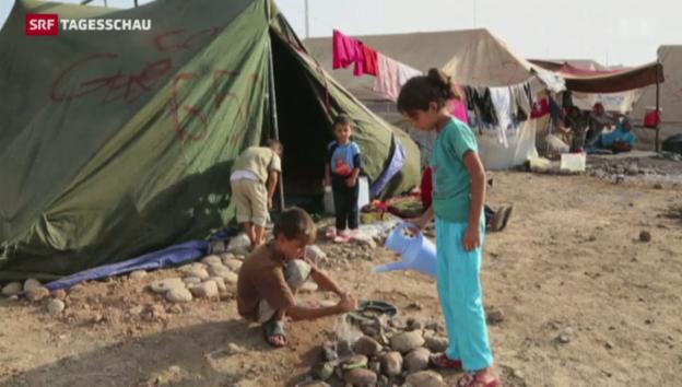 Video «Bundesrat will syrische Flüchtlinge aufnehmen» abspielen