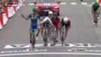 Video «Matthews gewinnt 10. Tour-de-France-Etappe» abspielen