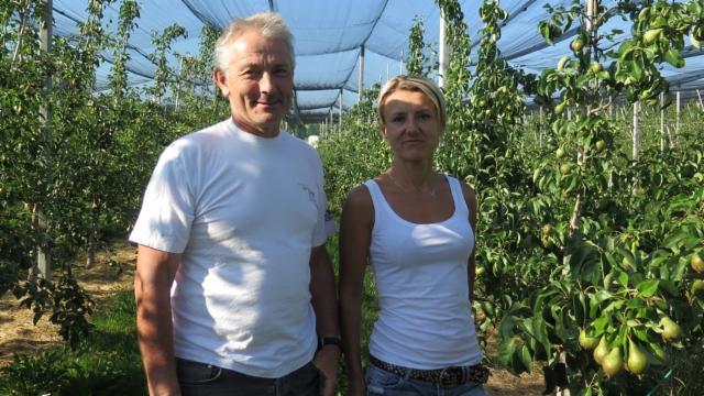Aus dem Archiv: Ausländische Erntehelfer auf Thurgauer Feldern