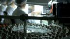 Video «Weg eines Schweizer Medikaments» abspielen