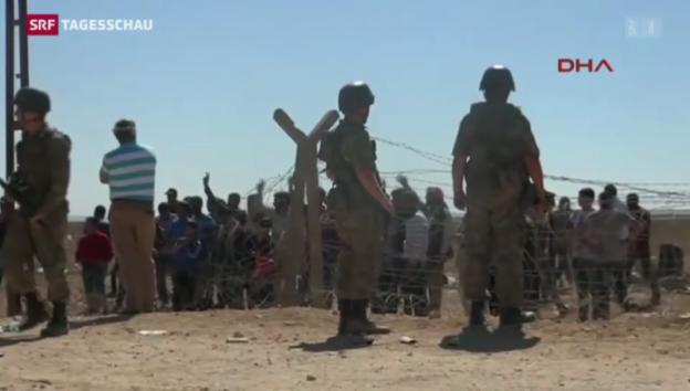 Video «Massenflucht von der IS-Terrormiliz» abspielen
