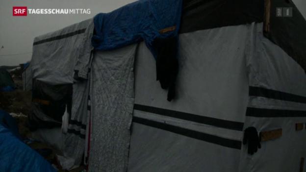 Video «Polizeieinsatz in Calais» abspielen