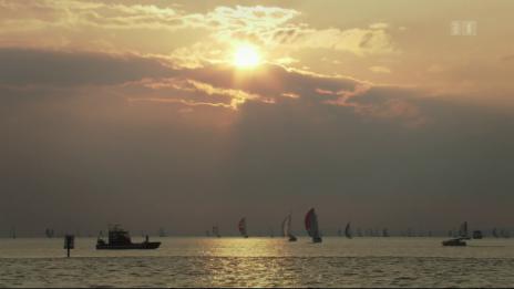 Video «Der Bodensee – Wildnis am grossen Wasser» abspielen