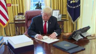 Video «FOKUS: Die Wahlversprechen von Donald Trump» abspielen
