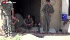 Video «Kurden kämpfen aktiv gegen den IS» abspielen