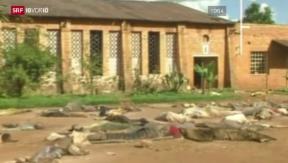 Video «Ruanda 20 Jahre Genozid» abspielen