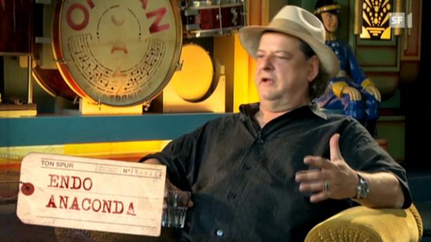 Video «Tonspur mit Endo Anaconda» abspielen