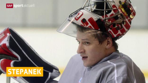 Video «Eishockey: SCB verpflichtet Jakub Stepanek («sportaktuell»)» abspielen