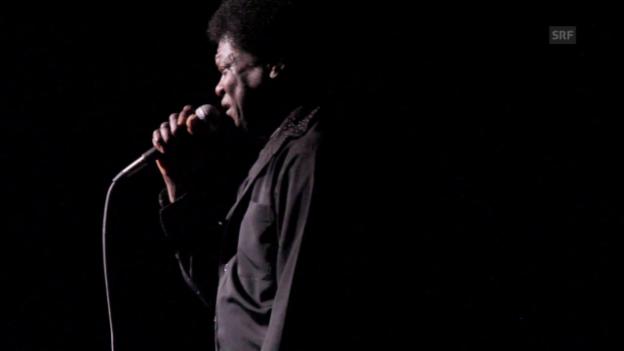 Video «Charles Bradley überschüttet das Publikum mit Liebeserklärungen» abspielen