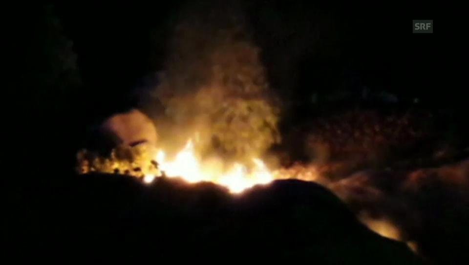 Flammen über Disney World (unkomm.)