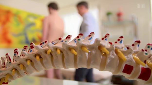 Video «Reise durch die Alternativmedizin (5) – Osteopathie» abspielen