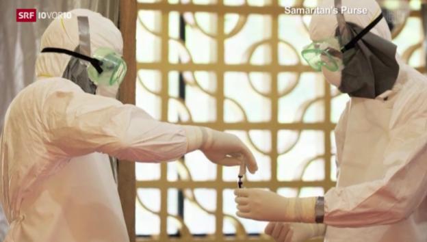 Video «Medizin gegen Ebola? Forscher sind uneins» abspielen