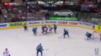 Video «WM-Final: Highlights» abspielen