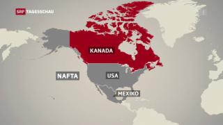 Video «Ringen um Nafta-Abkommen» abspielen