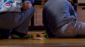 Video «Trotz Kritik sinken KESB Fallzahlen» abspielen