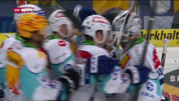 Video «Davos - Rapperswil (sportaktuell)» abspielen