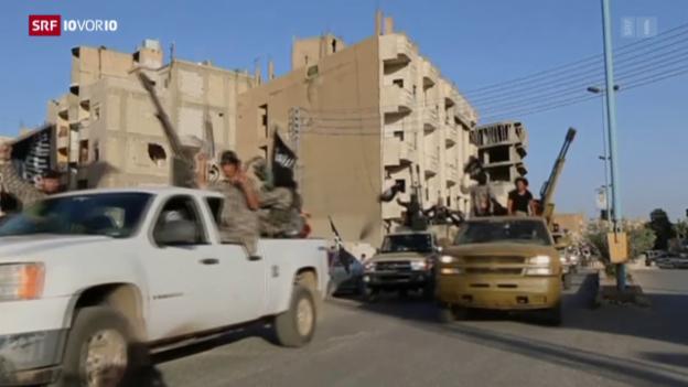 Video «FOKUS: Neue Zahlen rund um Schweizer Dschihad-Reisende» abspielen