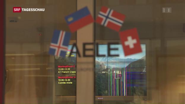 Video «Schweiz stellt MEI-Vorschlag in Brüssel vor» abspielen