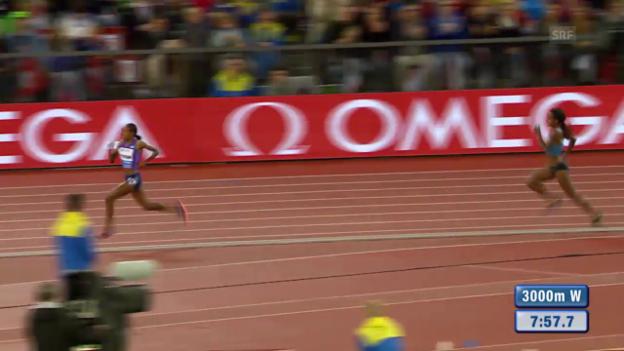 Video «Leichtathletik: Weltklasse in Zürich, 3000 m Frauen» abspielen