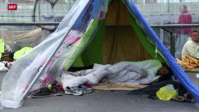 Video «Das Flüchtlingsdrama von Calais» abspielen
