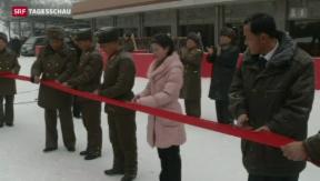 Video «Nordkorea eröffnet Ski-Resort» abspielen
