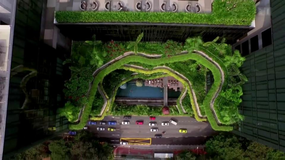 «Die Idee»: Dachgärten in Singapur helfen Stadtklima