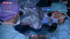 Video «Neuer Zulassungsstopp für Ärzte» abspielen