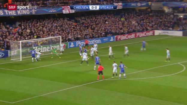Video «Fussball: CL, Chelsea - Steaua («sportlive», 11.12.2013)» abspielen