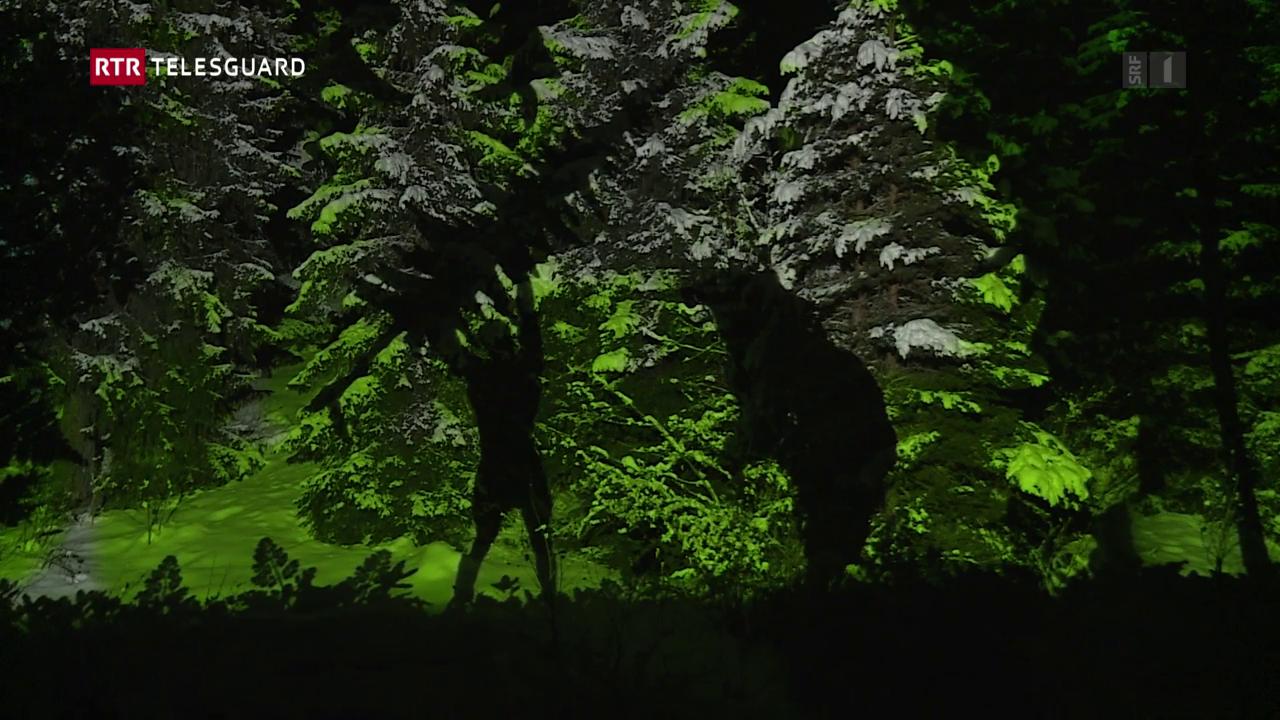 Illuminaziun d'enviern a Laax