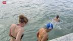 Video «Unerschrockene Schwimmer am bisher kältesten Wintertag» abspielen