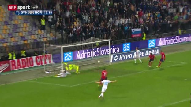 Video «Zusammenfassung Slowenien - Norwegen» abspielen