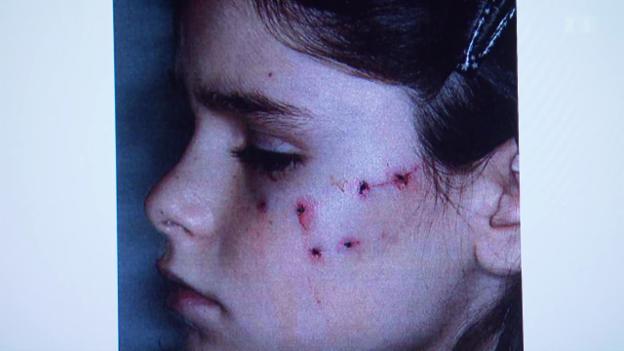 Video «Katze attackiert Kinder: Polizei schaut zu» abspielen