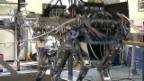 Video «Roboter für Katastropheneinsatz» abspielen