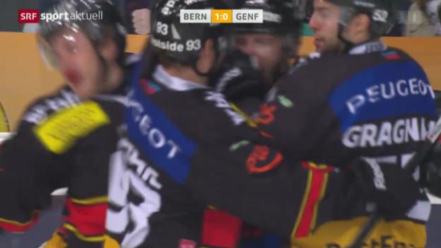 Video «Eishockey: NLA, Bern - Genf» abspielen